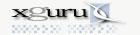 xguru Inc, websites, enewsletters, ISP hosting.
