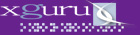 xguru, Inc. websites, enewsletters, ISP hosting