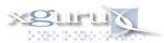 xguru, Inc. websites, email newsletters, website hosting